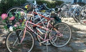 BikesAndFlowers